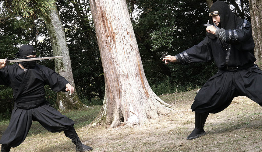 Ninja training iga ninja asyura tokyo for Real art for sale